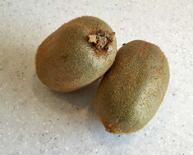 Actinidia deliciosa - the chinese gooseberry or kiwifruit