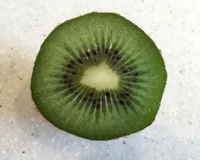 The green flesh and black seeds of Kiwi Fruit
