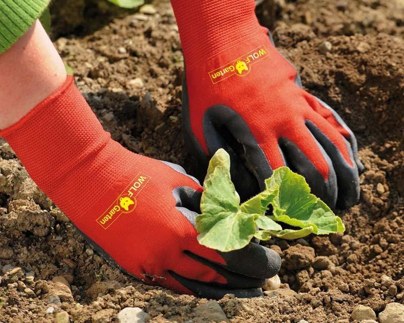 Garden Glove by Woif Garten