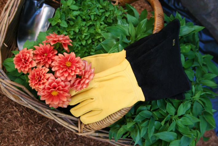 Gloves Garden ToughTouch GOLD LEAF