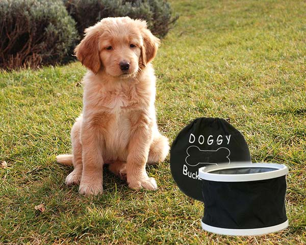 Doggy Bucket
