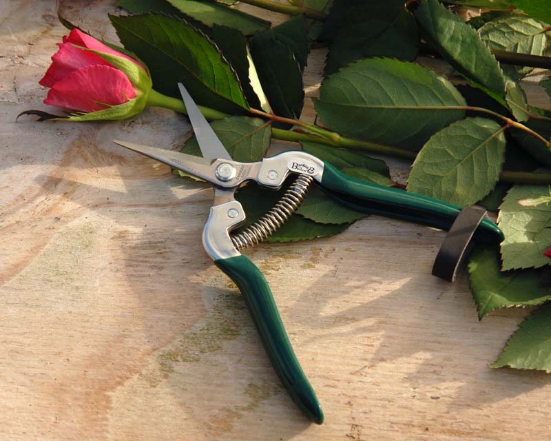 Flower and fruit Snips by Burgon and Ball