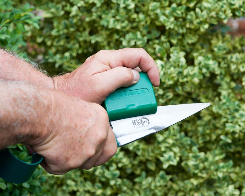 The Topiary Trimming Shear Sharpener is easy to use.