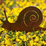 Snail - decorative garden art.