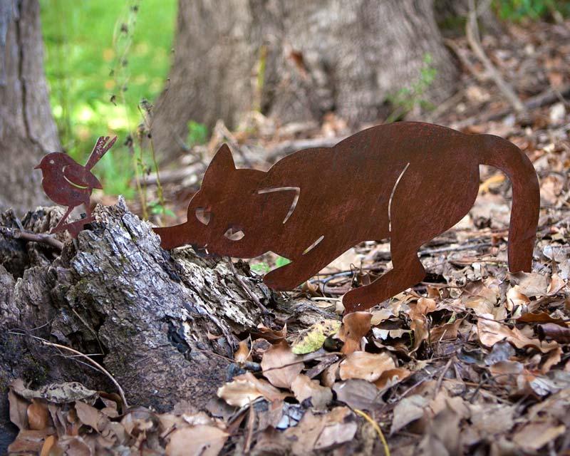 Cat and wren in woods