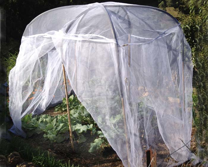 Veggie saver net - showing easy access. (sold as net only, pole support not included.)