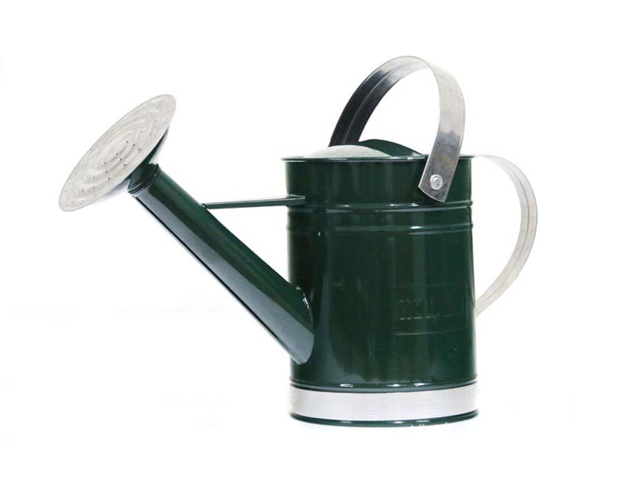Holman 1.8l watering can - Green. Also available in Galvanised