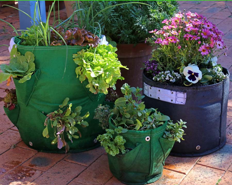 Bloombagz - 8 Pocket salad Planter, 3 pocket Herb Planter and 30l Eco Planter