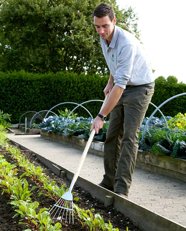 Culti-Rake - part of the Burgon and Ball range of RHS Endorsed Stainless Large Tools