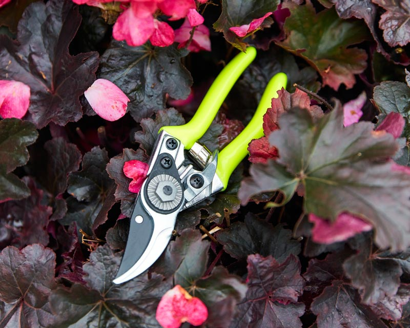 Pocket Pruner Florabrite yellow by Burgon and Ball