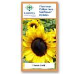 Classic Gold FleuroSun Sunflower Seeds