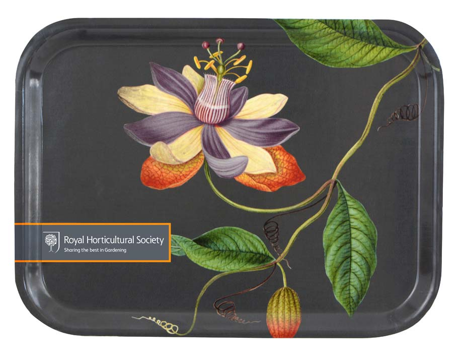 FSC Plywood Tray with RHS design - Passiflora