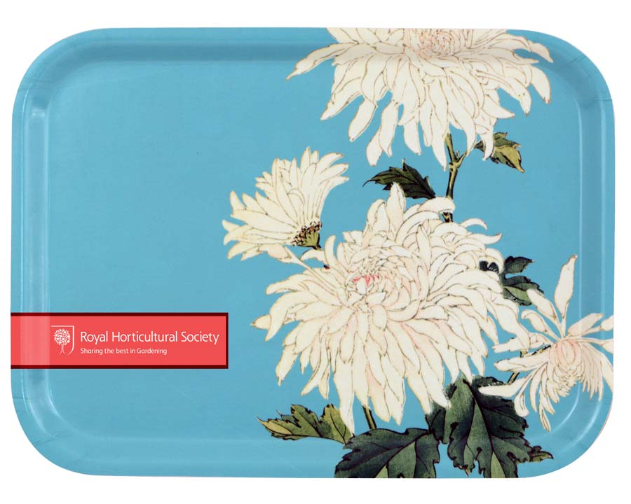 FSC Plywood Tray with RHS design -Chrysanthemum