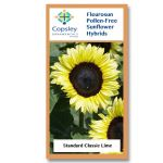 Classic Lime FleuroSun Sunflower Seeds