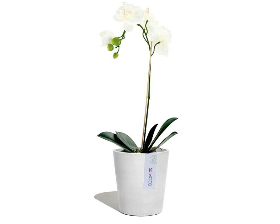 White Grey - Morinda Orchid Pot - EcoPots