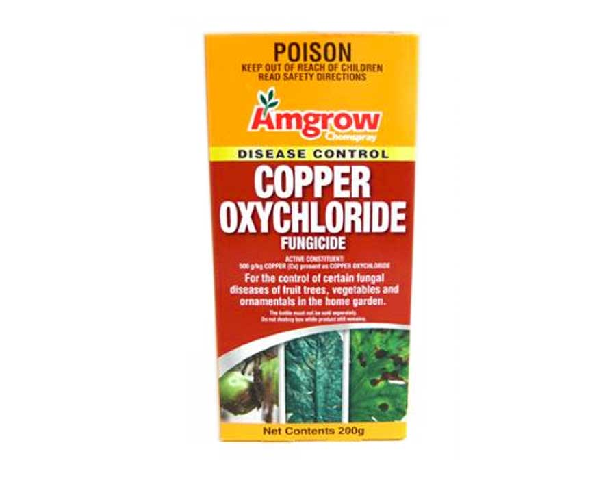 Coppr oxychloride fungicide - Amgrow