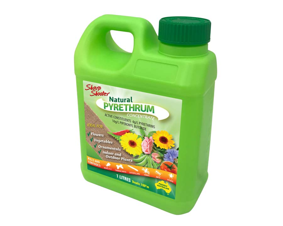 Natural Pyrethrum concentrate - Sharpshooter
