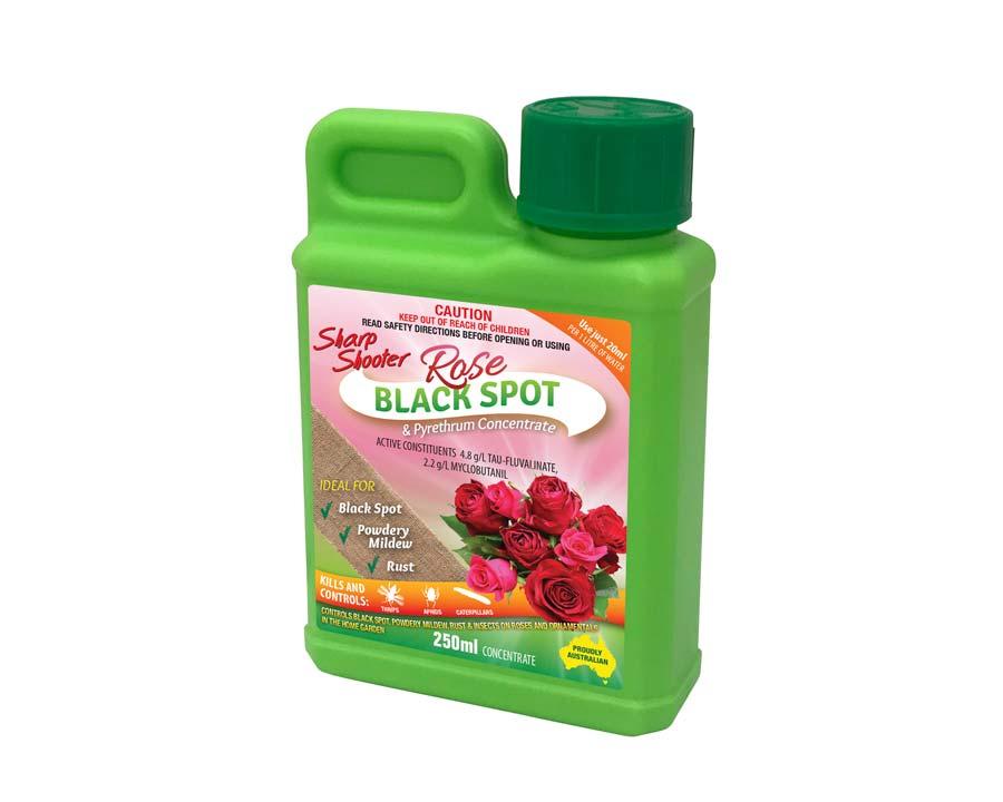 Rose Blackspot and Insect Spray - Sharpshooter