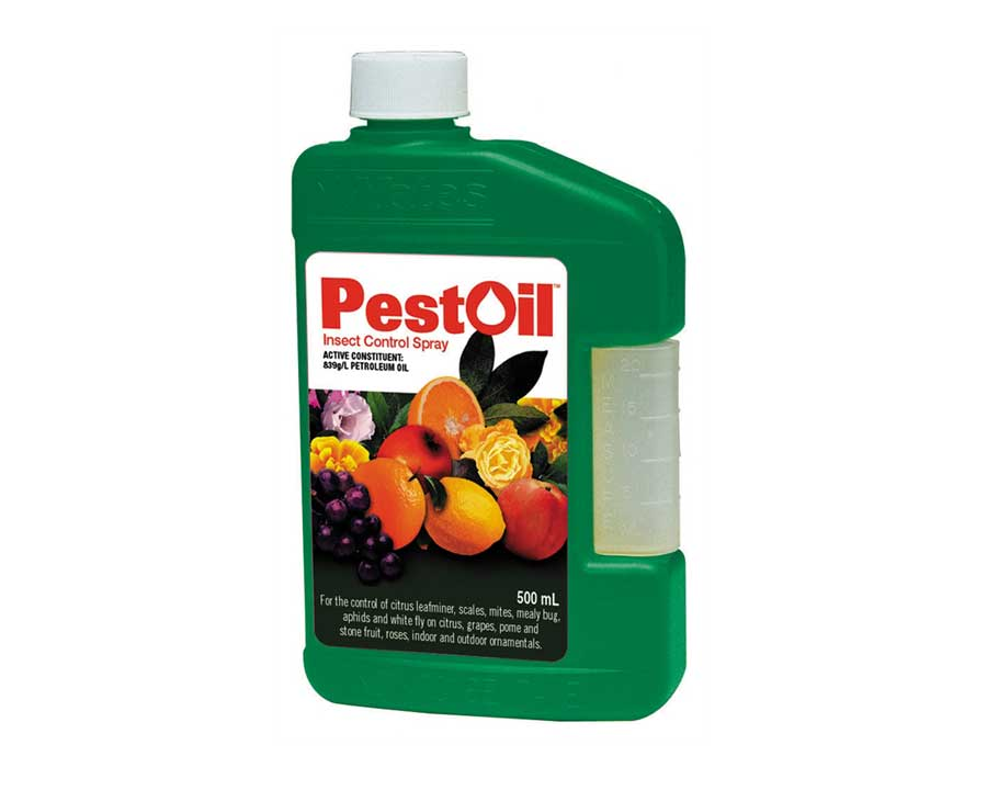 Pest Oil Concentrate - Yates