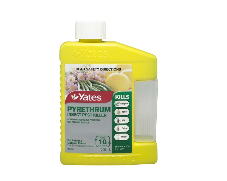 Pyrethrum Insect Pest Killer - Yates.  Concentrate in 20ml bottle