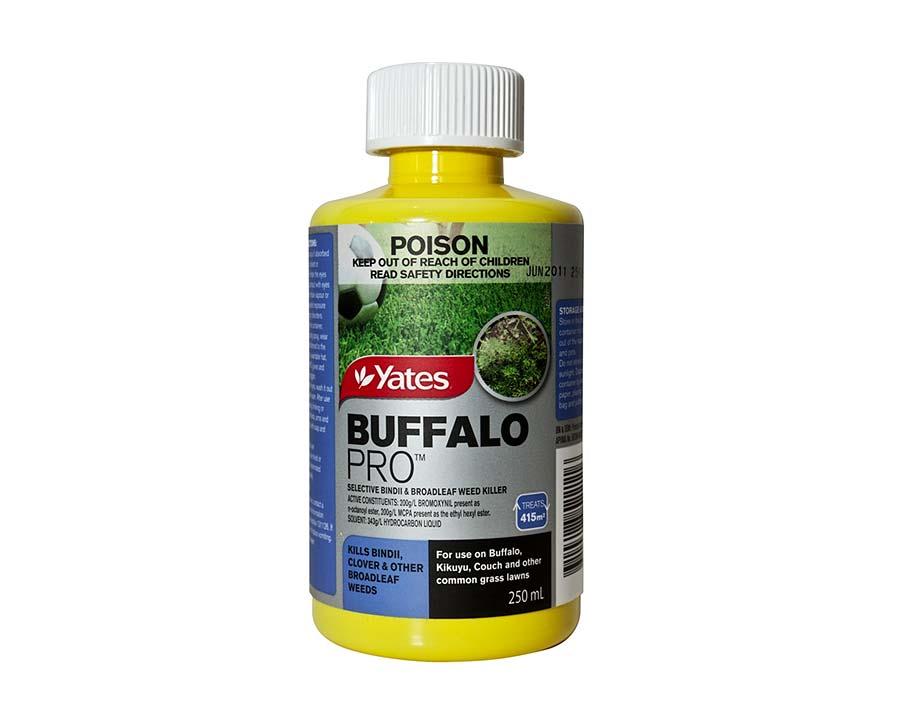 Buffalo Pro - Yates