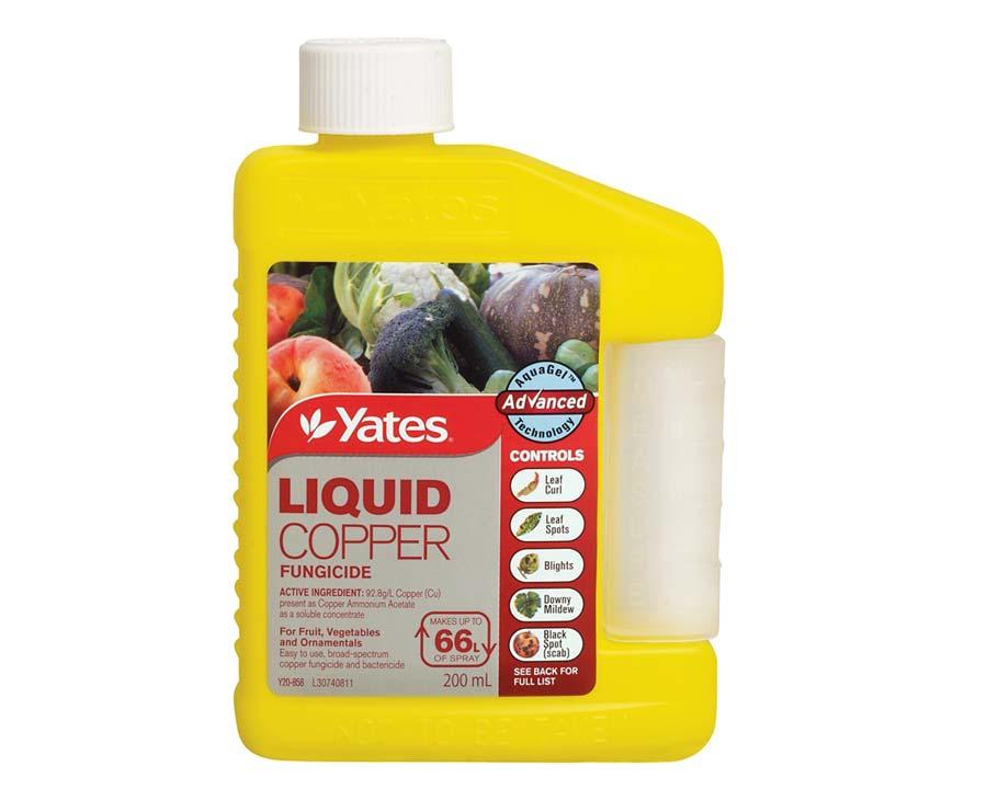Liquid Copper - Yates