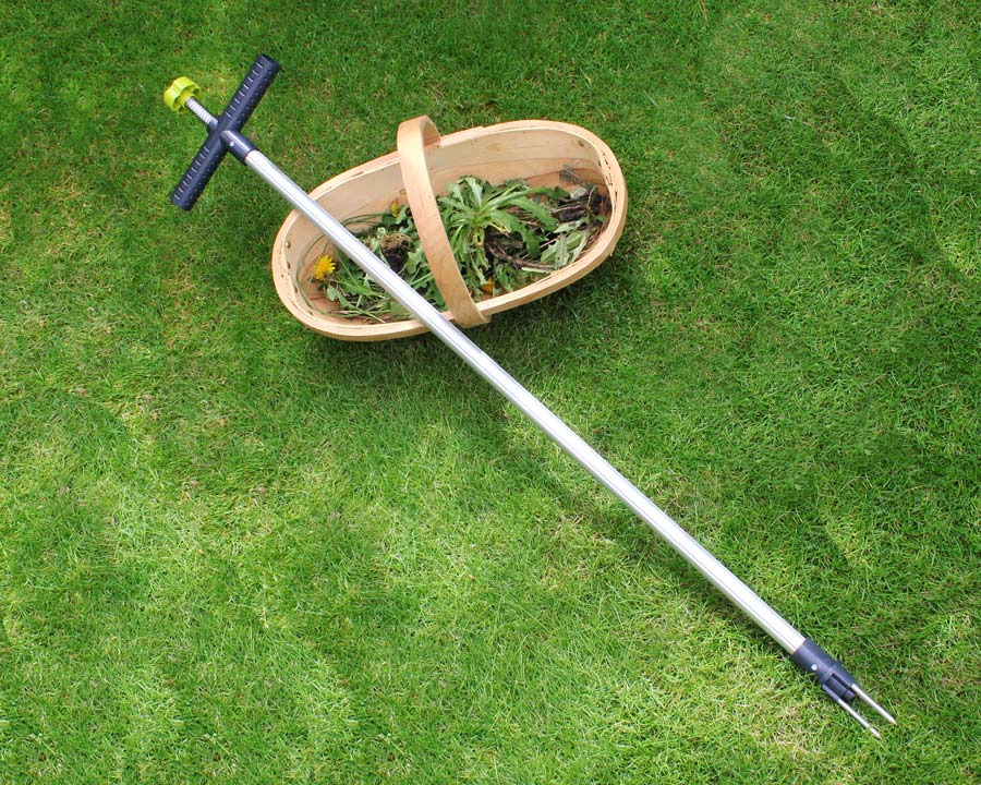 Wonder Weed Puller - Burgon and Ball