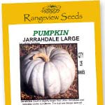 Pumpkin Jarrahdale Large - Rangeview Seeds