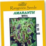 Amaranth Mira - Rangeview Seeds