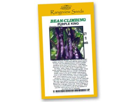 Climbing Beans - Purple king - Rangeview Seeds