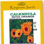 Calendula Nova Orange - Rangeview Seeds