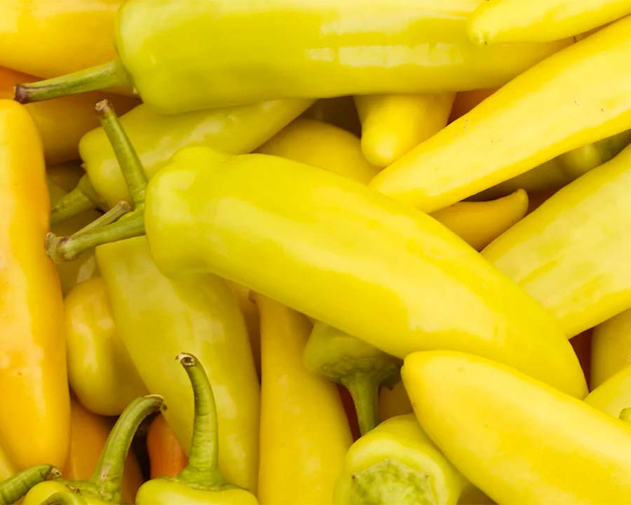 Capsicum Hungarian Yellow Wax