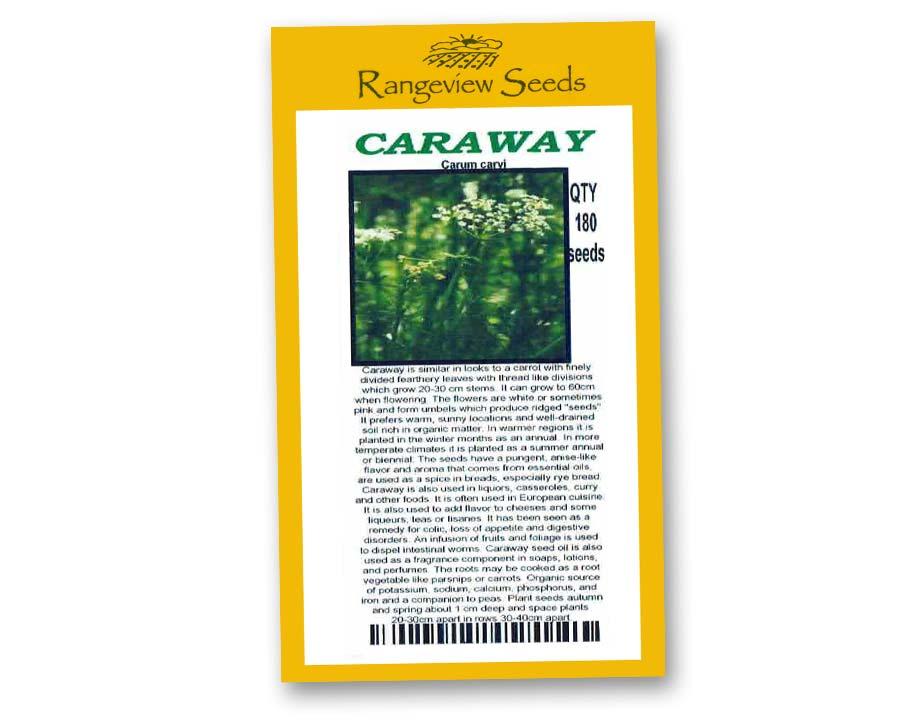 Caraway - Rangeview Seeds