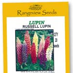 Lupin Russell Lupin - Rangeview Seeds
