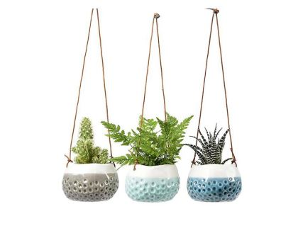 Baby Dotty hanging pots