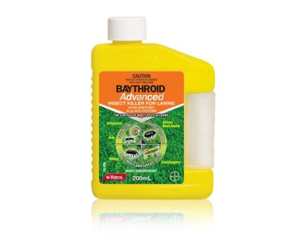 Baythroid Advanced Insect Killer for Lawns - Yates NEW PACKAGING