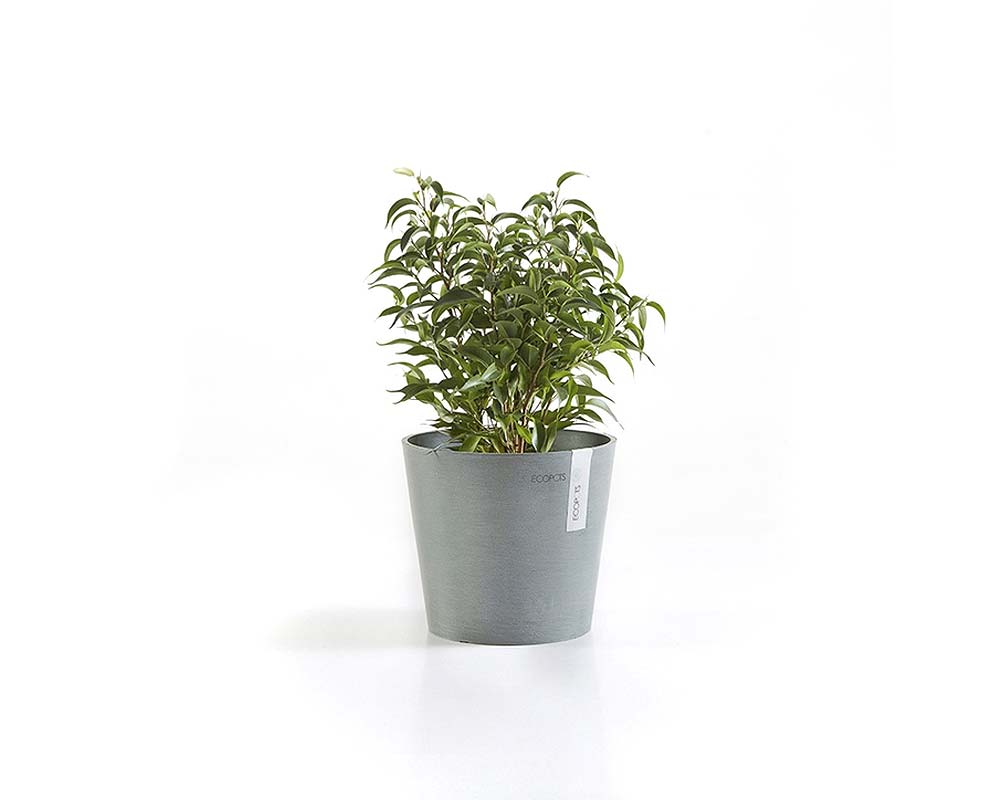 Blue Grey - Amsterdam Mini Succulent Pot 17cm - EcoPots