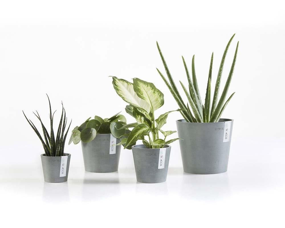 Various Sizes - Blue Grey - Amsterdam Mini Succulent Pot - EcoPots