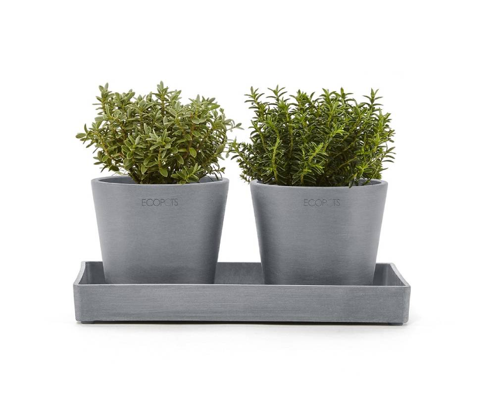 Amsterdam mini pots shown with the Amsterdam display platter (sold separately)