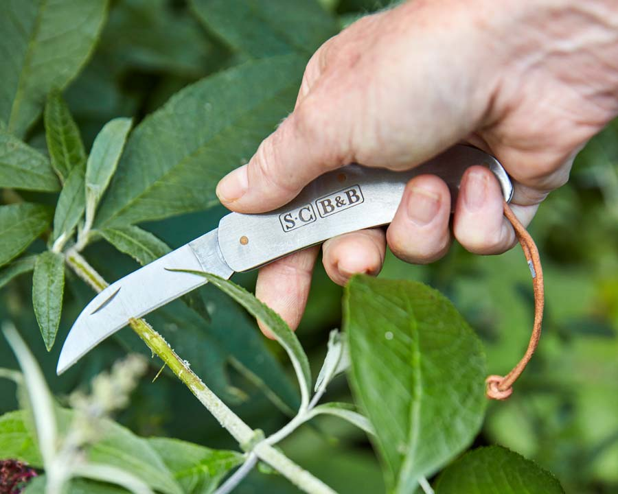 New - Stainless steel pocket knife by Sophie Conran and Burgon and Ball
