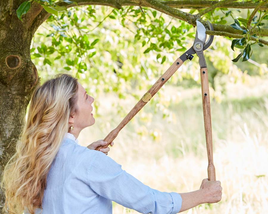 Loppers - part of new range of quality garden tools by Sophie Conran