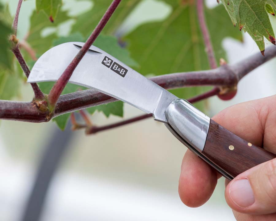 Pocket Knife -part of the National Trust range of quality garden tools