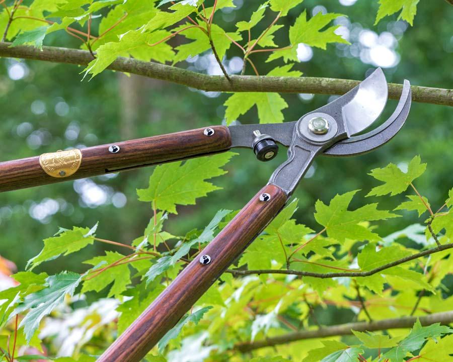 Loppers National Trust range of garden tools