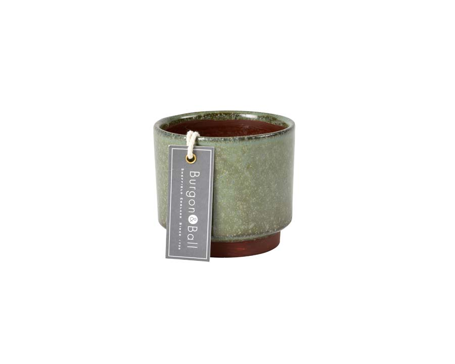 Malibu Succulent Pots in Green by Burgon and Ball