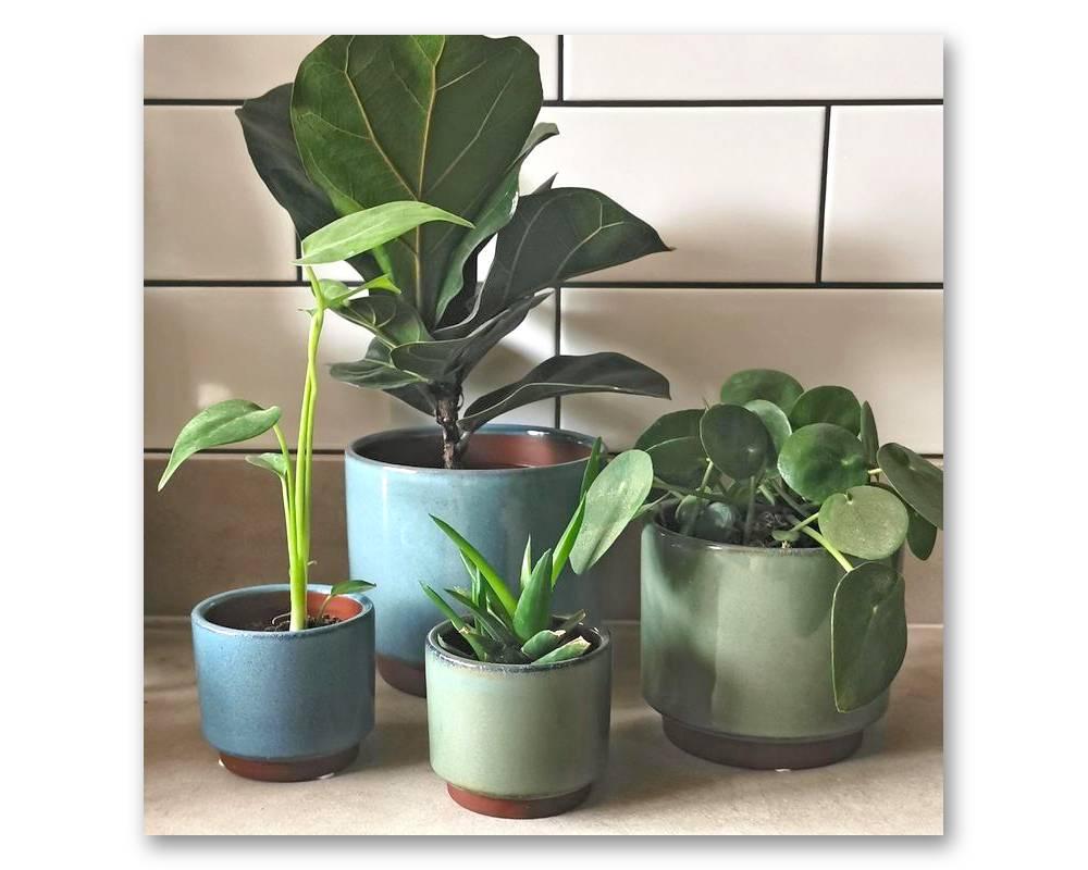 Green and Blue - Variety of Sizes - Malibu Pot - Burgon & Ball