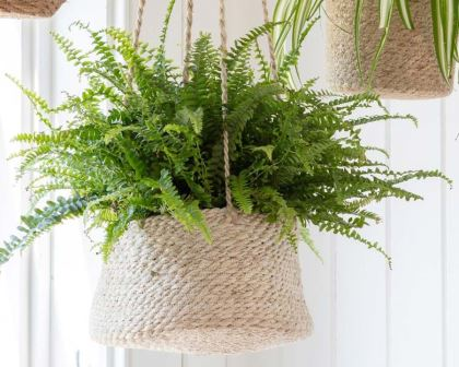Hanging Plant Pot - the tapered design are hand woven from jute.
