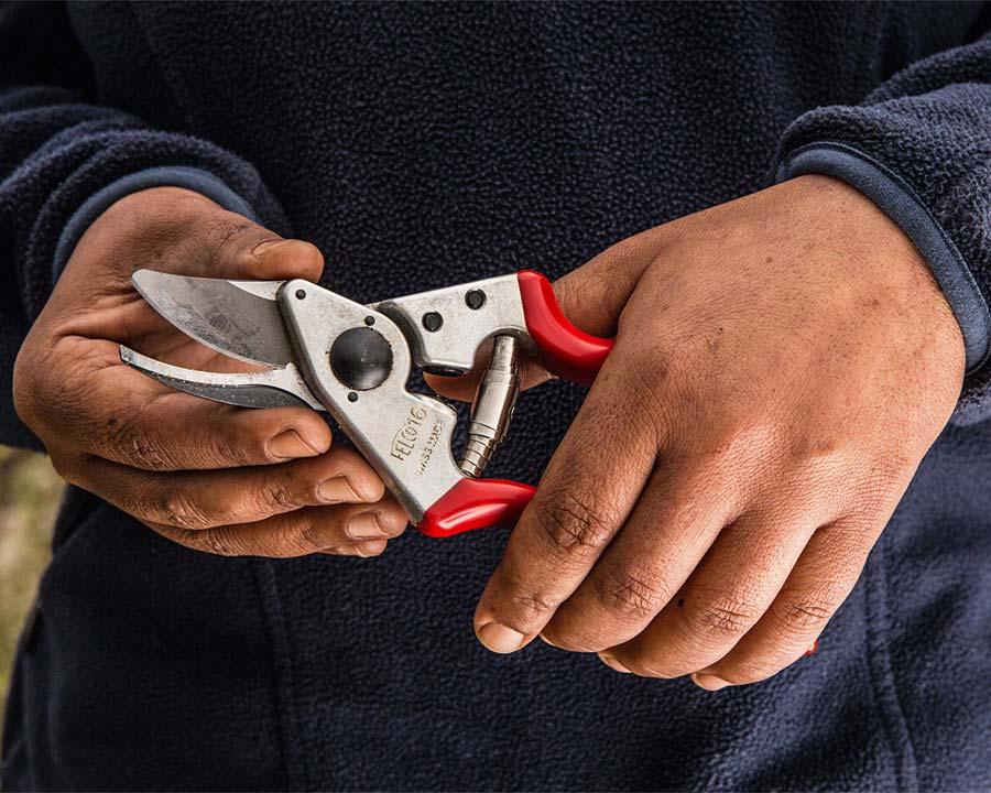 Felco16 pruning secateurs for left handers