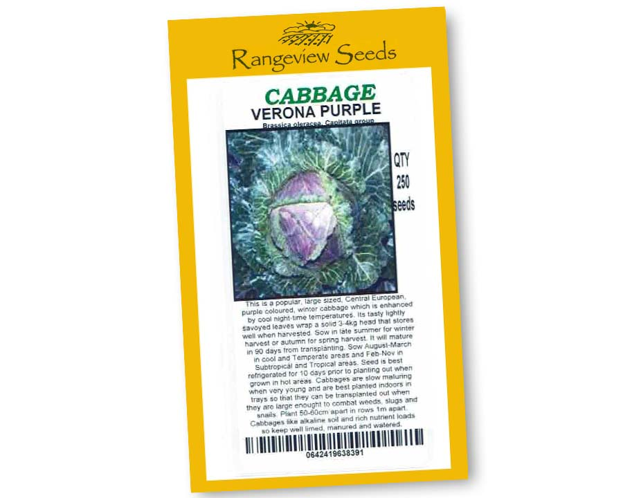 Cabbage Verona Purple - Rangeview Seeds