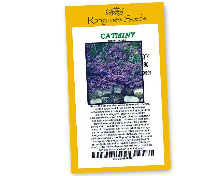 Catmint, Nepeta musinii - Rangeview Seeds