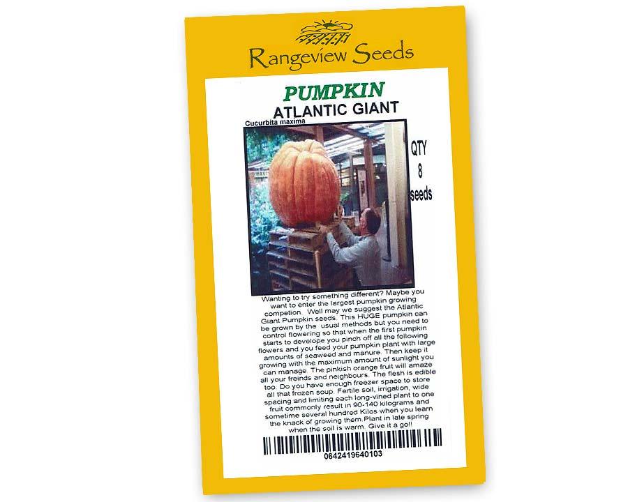 Pumpkin Atlantic Giant - Rangeview Seeds